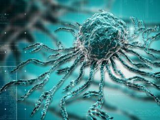 Compuestos del sistema inmunológico, alfa defensinas, que reducen ...